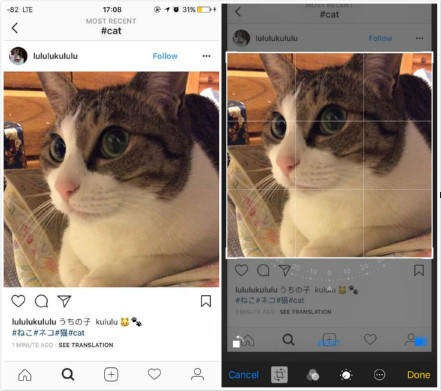 How to save Instagram photos on iPhone and PC