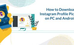 How to Download Instagram Profile Pictures on PC and Android