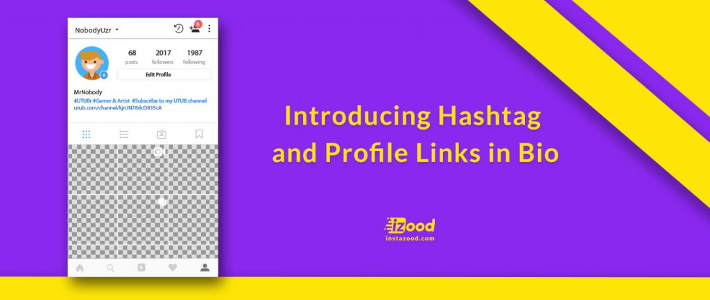 Introducing Hashtag and Profile Links in Bio