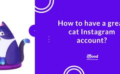 15 Simple Tips to a Great Cat Instagram Account