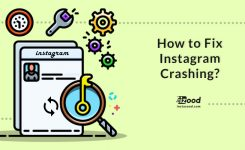 How to Fix Instagram Crashing?