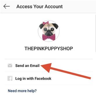 I Forgot my Instagram Password, What     | Instazood