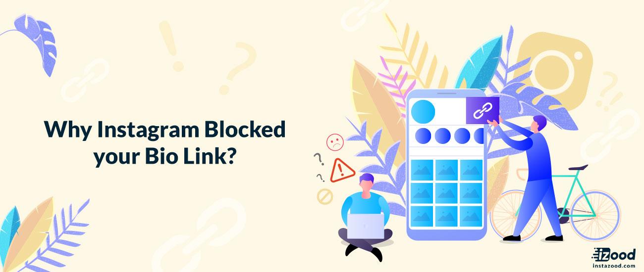 Why Instagram Blocked your Bio Link?