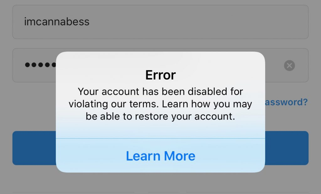 disabled account error on Instagram