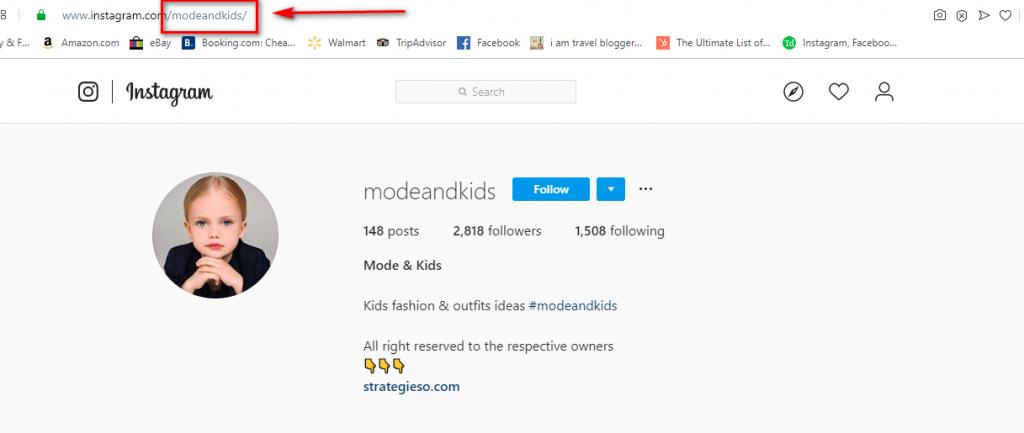 Nama pengguna Instagram